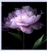 Screen Shot 2013-05-28 at 3.06.38 PM