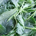 Kale and Oxalates