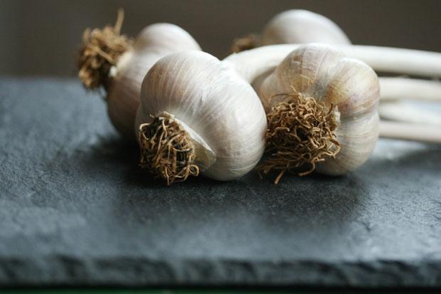 Farmer's Market Garlic