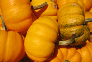 How To Cook With Pumpkin