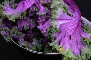 Purple Kale is a Superfood