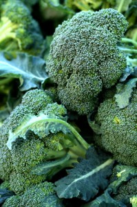 superfood-broccoli1
