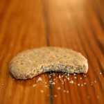Myth Buster: The Five Second Rule