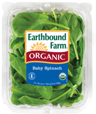 earthbound-spinach