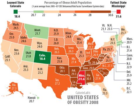2008 obesity rates