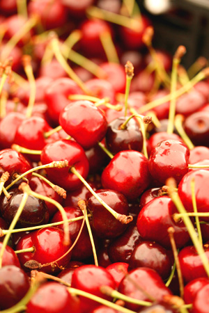 Cherries from Union Square Farmer's Market