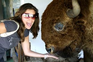 Don't Feed the Buffalo