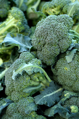Farmer's Market Broccoli