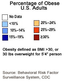 obesity trends in the US