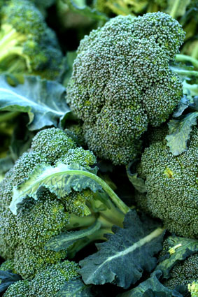 Superfood Broccoli