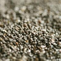 Superfood Chia Seeds